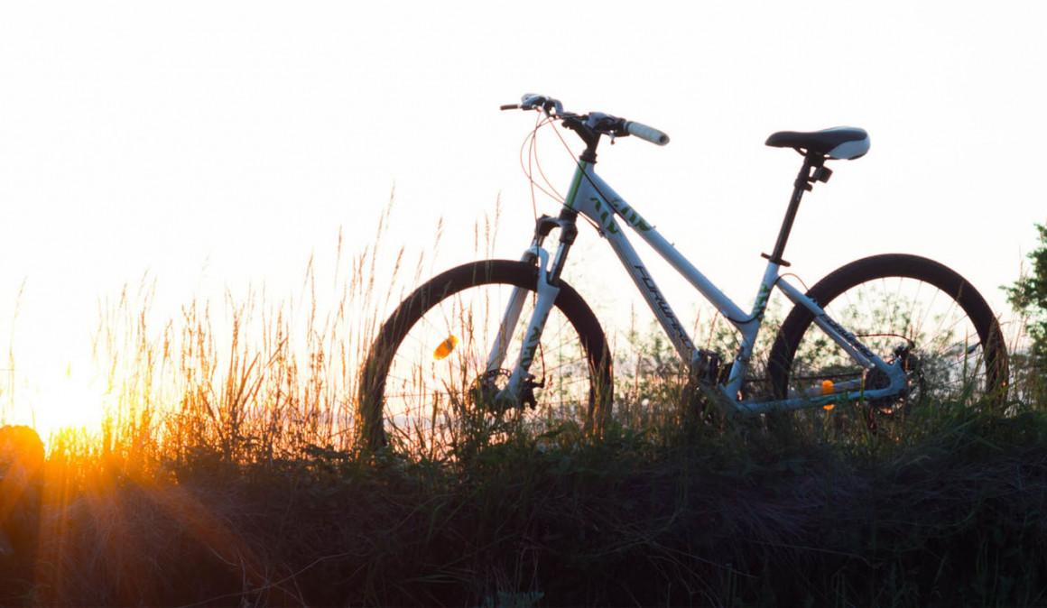 Los empleados de Janssen recorrerán 8.000 km en bicicleta en Mallorca para Aldeas Infantiles